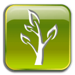 Christian Growth